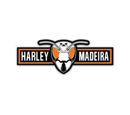 Harley Madeira Tours